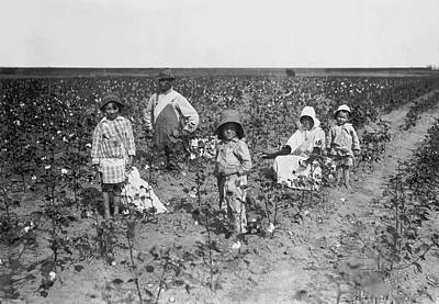 1916 Photograph - Family Picking Cotton by Underwood Archives