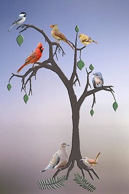 Wren Photograph - Family Tree by Bonnie Barry