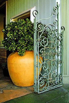Southwest Gate Photograph - Fancy Gate And Plain Pot by Ben and Raisa Gertsberg