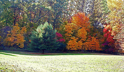 Pond Photograph - Fantastic Fall by Aimee L Maher Photography and Art Visit ALMGallerydotcom