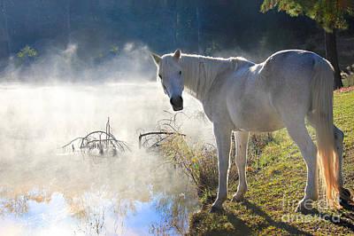 Fantasy Fog Print by Leslie Kirk