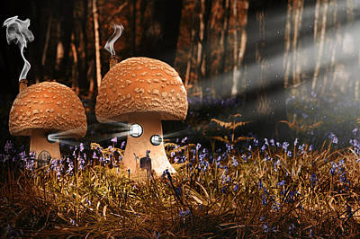 Fantasy Image Of Toadstool Houses In Bluebell Woods Print by Matthew Gibson