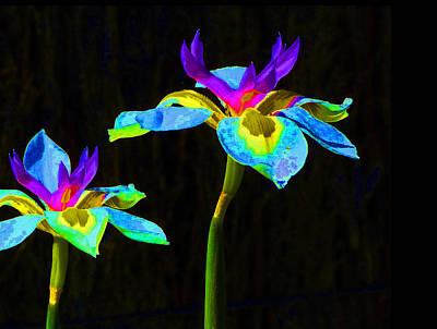 Fantasy Irises 2 Print by Margaret Saheed