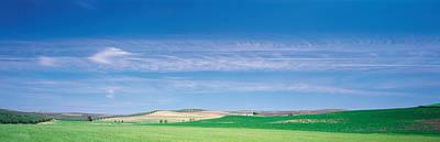 Farm Audausia Cordoba Vicinity Spain Print by Panoramic Images
