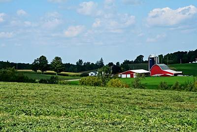 Rural Scene Photograph - Farm Country by Heather Allen