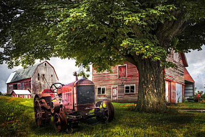 Red Roof Photograph - Farm Life by Debra and Dave Vanderlaan