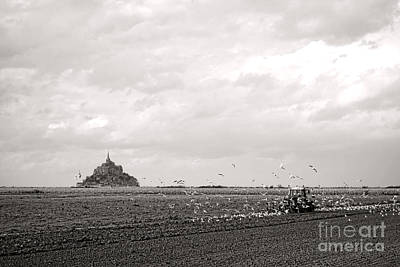 Flying Seagull Photograph - Farm Work At Mont Saint Michel by Olivier Le Queinec