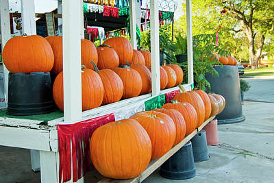 Ditto Photograph - Farmer's Market, Autumn In Luling, Texas by Larry Ditto
