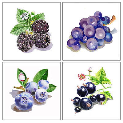 Blueberry Painting - Farmers Market Gifts Black And Blue Vitamins by Irina Sztukowski