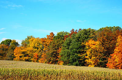 Beautiful Photograph - Farmfield Fall by Dan Sproul