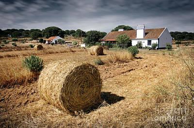 Rural House Photograph - Farmland by Carlos Caetano