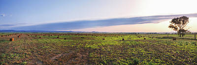 Vale Photograph - Farms At Sunset, Vale, Butte County by Panoramic Images