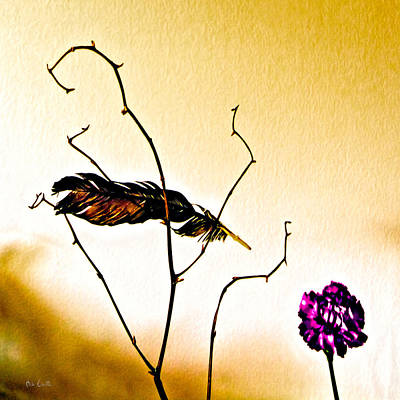 Feather And Carnation Print by Bob Orsillo