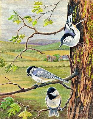 Chickadee Drawing - Feathered Friends by Marilyn Smith