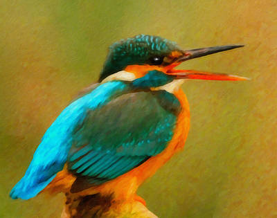 Kingfisher Mixed Media - Feathered Friends by Georgiana Romanovna
