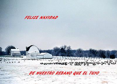 Felize Navidad Print by Skip Willits