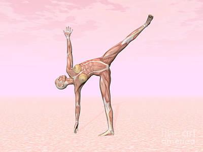 Rectus Abdominis Digital Art - Female Musculature Performing Half Moon by Elena Duvernay