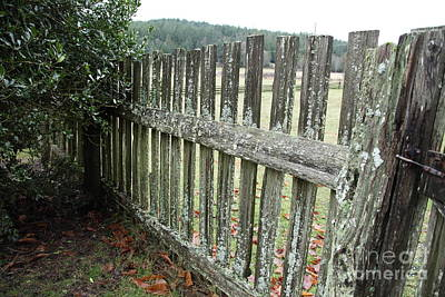 Fence At The Farm Print by Graham Foulkes