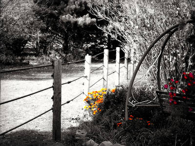 Benches Digital Art - Fence Near The Garden by Julie Hamilton