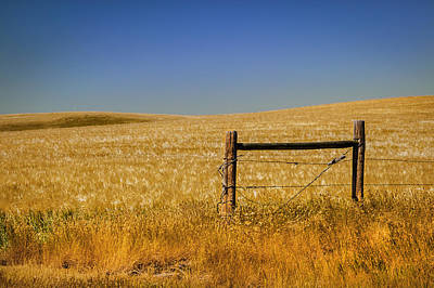Fence Post Near Choteau Montana Print by Rich Franco