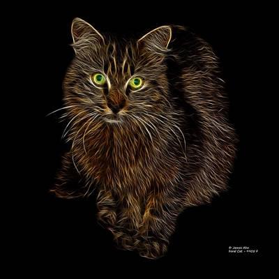 Feral Cat - 9905 F Print by James Ahn