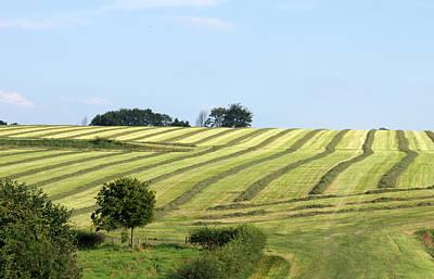 Field In Summertime Print by Jolly Van der Velden