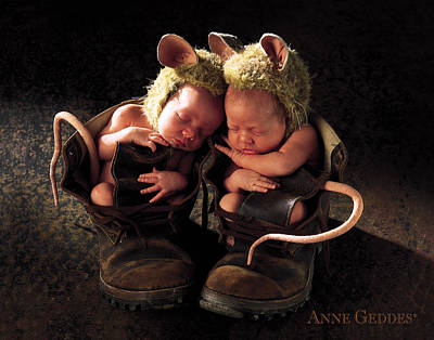Field Mice Print by Anne Geddes