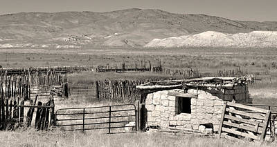 Wagon Train Photograph - Field Of Dreams by Everett Bowers