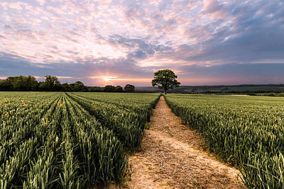 Landscape Photograph - Field Of Dreams by Ian Hufton