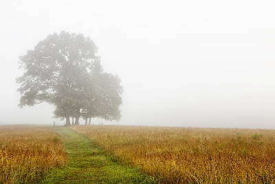 Wood Photograph - Fields In The Fog by Andrew Soundarajan