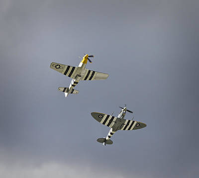 Ferocious Frankie Photograph - Fighters Reaching The Sky by Maj Seda