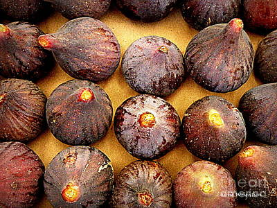 Figs Print by Lainie Wrightson