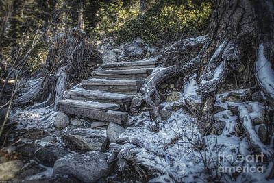 Find Your Own Way Print by Mitch Shindelbower
