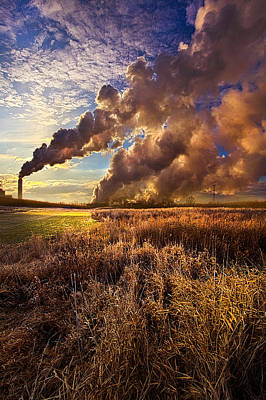 Finding The Beauty Within Print by Phil Koch
