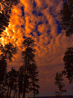 South Dakota Photograph - Fire In The Sky Over The Black Hills by Cathy Anderson