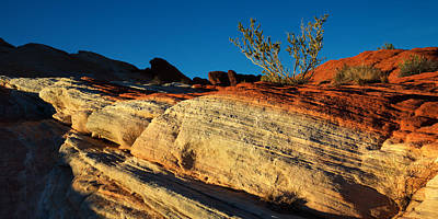 Valley Of Fire Photograph - Fire Lines by Chad Dutson