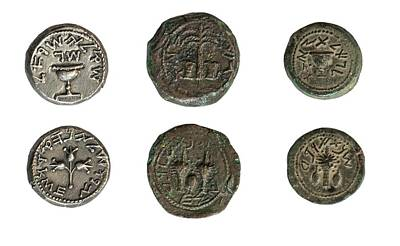 Artefact Photograph - First Jewish Revolt Coins by Photostock-israel