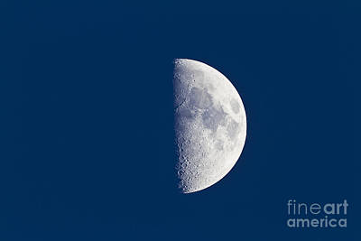 First Quarter Moon Taken Near Sunset Print by Alan Dyer