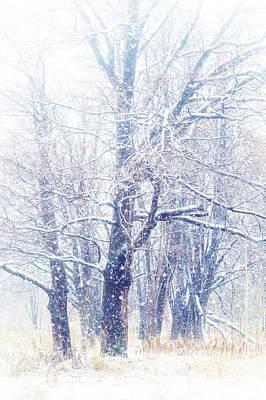 First Snow. Dreamy Wonderland Print by Jenny Rainbow