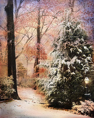 Winter Scenes Photograph - First Snow by Jai Johnson