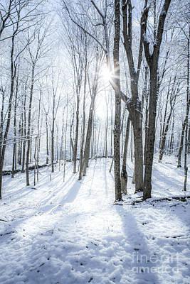 First Snowfall Print by Diane Diederich