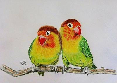 Lovebird Drawing - Fischer's Lovebirds by Kevin Hubbard