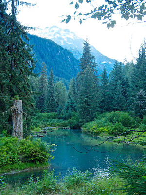 Tonga Digital Art - Fish Creek In Tongass National Forest By Hyder-ak  by Ruth Hager
