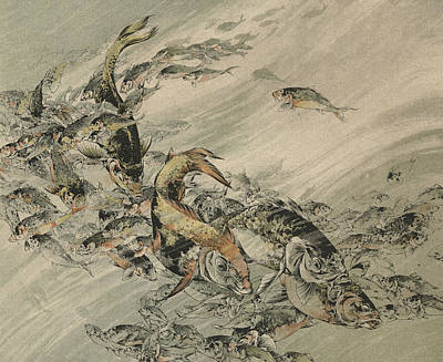Koi Drawing - Fishes by Jules-Auguste Habert-Dys