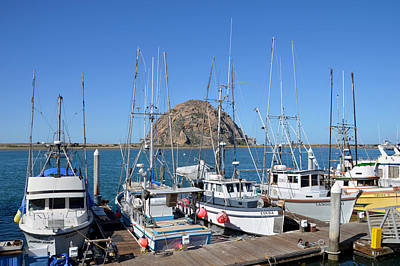 Fishing Fleet In Front Of Morro Rock Print by Barbara Snyder