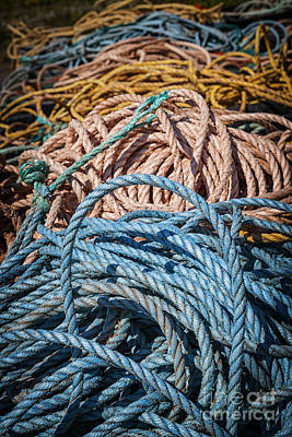 Princes Photograph - Fishing Ropes by Elena Elisseeva