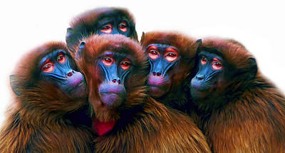 Gorilla Mixed Media - Five Baboons by Daniel Hagerman