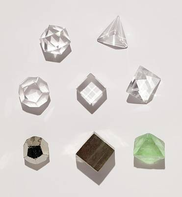 Five Platonic Solids With 3 Natural Forms Print by Paul D Stewart