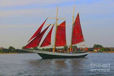 Kathleen Photograph - Five Red Sails by Kathleen Struckle