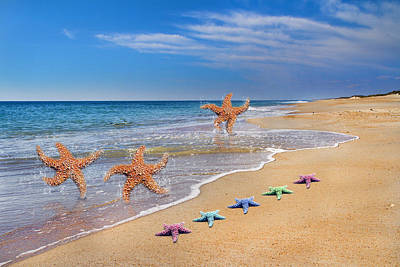 Shackleford Photograph - Five Star Beach Yippe Yah by Betsy Knapp